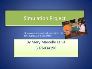 Simulation  Project