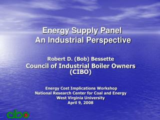Energy Supply Panel  An Industrial Perspective