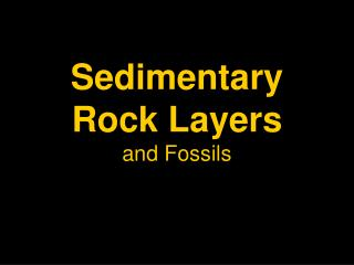 Sedimentary Rock Layers and Fossils