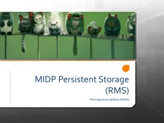 MIDP Persistent Storage (RMS)