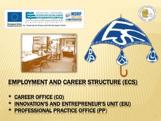 EMPLOYMENT AND CAREER STRUCTURE