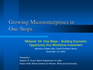 Growing Microenterprises in One-Stops