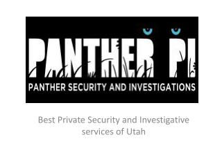 Panther PI - Best Private Security and Investigative service