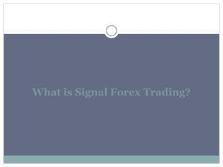 What is Signal Forex Trading?