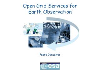 Open Grid Services for  Earth Observation