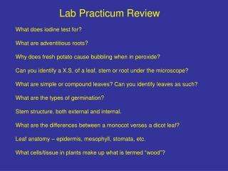 Lab Practicum Review