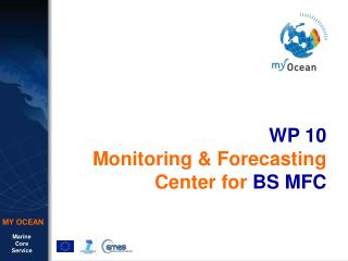 WP 10 Monitoring & Forecasting Center for  BS MFC