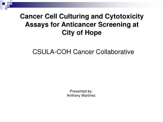Cancer Cell Culturing and Cytotoxicity Assays for Anticancer Screening at  City of Hope