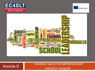 Model of the Entrepreneurship Motivation and Innovation Culture programme
