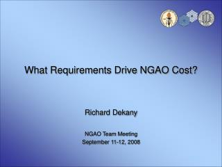 What Requirements Drive NGAO Cost?