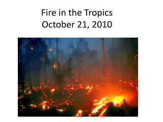 Fire in the Tropics October 21, 2010