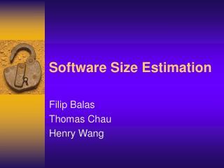 Software Size Estimation