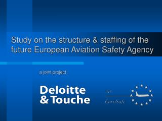 Study on the structure & staffing of the future European Aviation Safety Agency