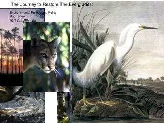 The Journey to Restore The Everglades:      							Reinventing CERP