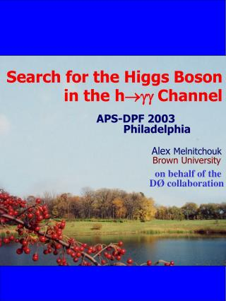 Search for the Higgs Boson   in the h  gg Channel