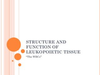 STRUCTURE AND FUNCTION OF LEUKOPOIETIC TISSUE