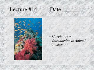 Lecture #14         Date ______