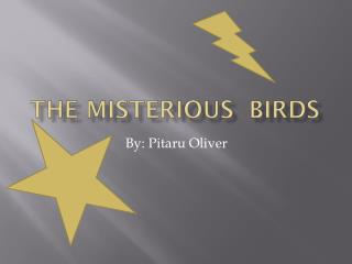 The  misterious birds