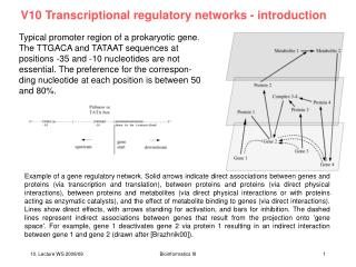V10 Transcriptional regulatory networks - introduction