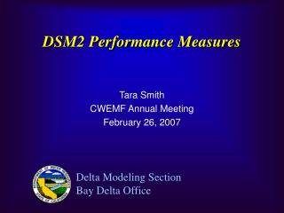 DSM2 Performance Measures