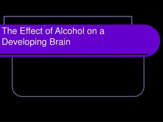 The Effect of Alcohol on a Developing Brain