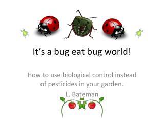 It's a bug eat bug world!