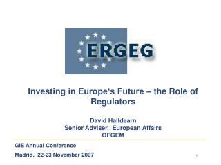 GIE Annual Conference Madrid,  22-23 November 2007