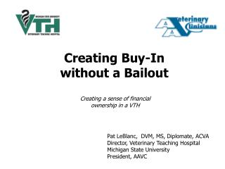 Creating Buy-In without a Bailout