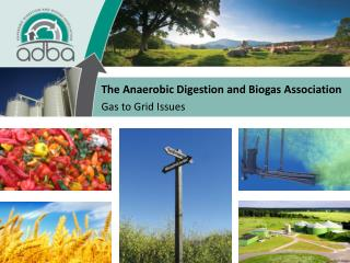 The Anaerobic Digestion and Biogas Association Gas to Grid Issues