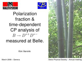 Polarization fraction &  time-dependent CP analysis of measured at Belle.