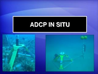 ADCP IN SITU
