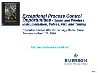 Exceptional Process Control Opportunities  - Smart and Wireless Instrumentation, Valves, PID, and Tuning