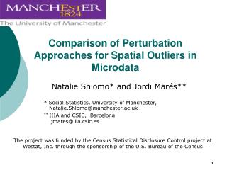 Comparison of Perturbation Approaches for Spatial Outliers in Microdata