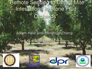 """Remote Sensing to Detect Mite Infestations in Stone Fruit Orchards"""