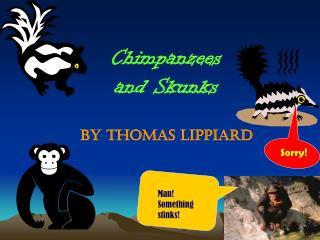 Chimpanzees and Skunks