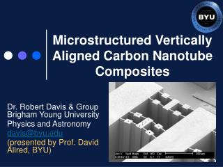 Microstructured Vertically Aligned Carbon Nanotube Composites
