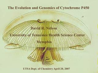 The Evolution and Genomics of Cytochrome P450                            David R. Nelson     University of Tennessee Hea