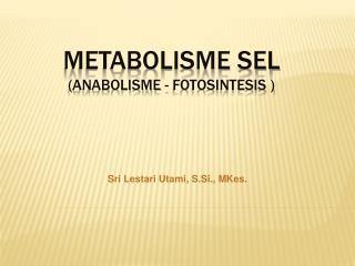 METABOLISME SEL  (ANABOLISME - FOTOSINTESIS )