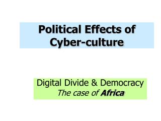 Political Effects of Cyber-culture