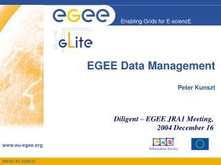 EGEE Data Management Peter Kunszt