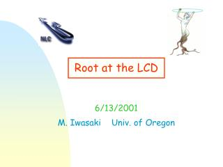 Root at the LCD