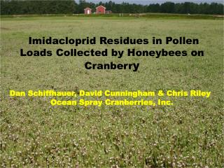 Imidacloprid Residues in Pollen Loads Collected by Honeybees on Cranberr y