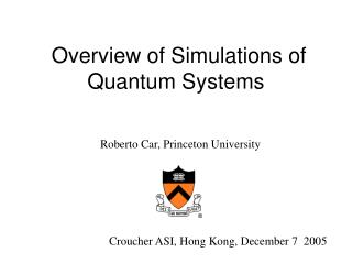 Overview of Simulations of Quantum Systems