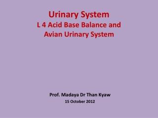 Urinary System L 4 Acid Base Balance and Avian Urinary System