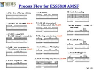 Process Flow for ESS5810 AMSF