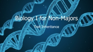 Human Genetics: Patterns of Inheritance for  Human Traits