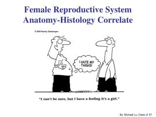 Female Reproductive System Anatomy-Histology Correlate