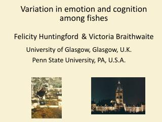 Variation in emotion and cognition among fishes Felicity  Huntingford  & Victoria Braithwaite