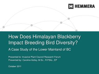 How Does Himalayan Blackberry Impact Breeding Bird Diversity?