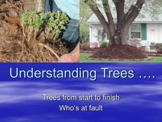 Understanding Trees ….